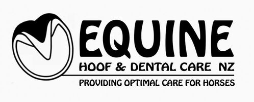 Equine Hoof and Dental care NZ